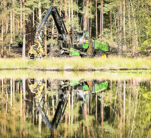 Case Study Coombes Forestry