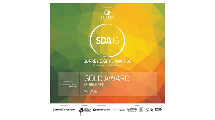 Surrey Digital Awards winning plaque